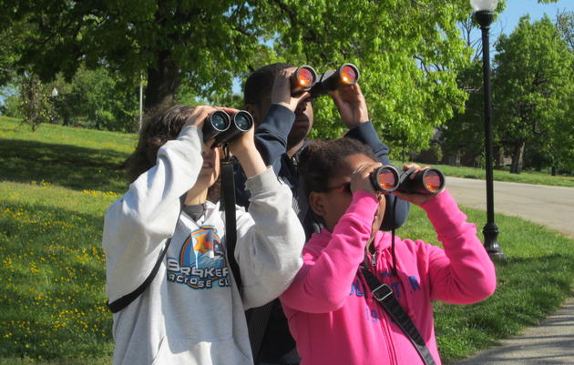 Patterson Park Bird Explorers Service Day for Teens