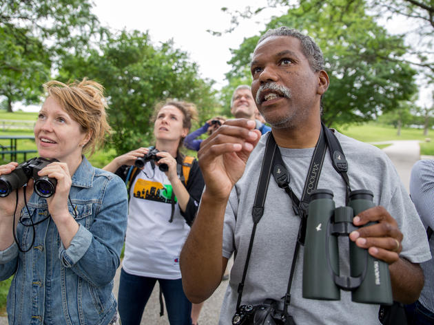 Baltimore's Birding Scene Is on the Rise