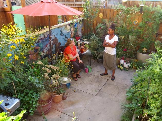 Creating Bird-Friendly Habitat at Home